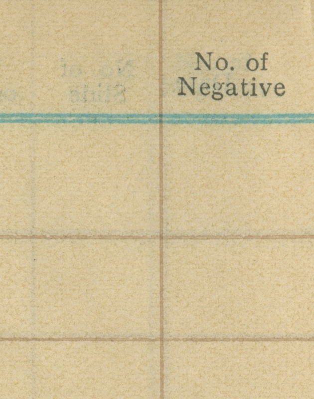 No of negative